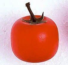 Estia 600243 Tomate für Kaufladen oder Kinderküche -