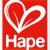 Hape E3127 – Gourmet Grill mit Zubehör, Holzspielzeug -
